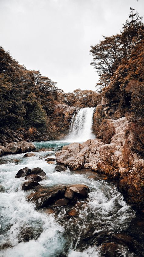 Waterfall XVII / Taupo, New Zealand Art Print by theadventureco Nature Aesthetic, Travel Aesthetic, Adventure Aesthetic, Beautiful World, Beautiful Places, Beautiful Pictures, Beautiful Forest, Beautiful Flowers, Aesthetic Backgrounds