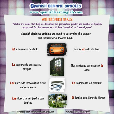 How to use Spanish Definite Articles in Sentences - SpanishLearningLab