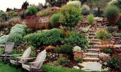 Easy Ways For Rock Hill Landscaping How To Decorate A Hillside With Rocks Sloped Backyard Landscaping Backyard Hill Landscaping Steep Gardens