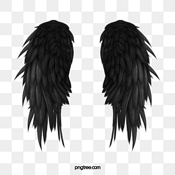 Black Wings Wings Clipart Wing Pretty Wings Png Transparent Clipart Image And Psd File For Free Download Wings Png Black Wings Angel Wings Png
