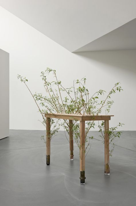 Perrine Lievens // [an object lesson in Graham Harman's speculative realism]