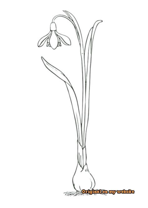39 stilisierte pflanzenideen  blumen zeichnen