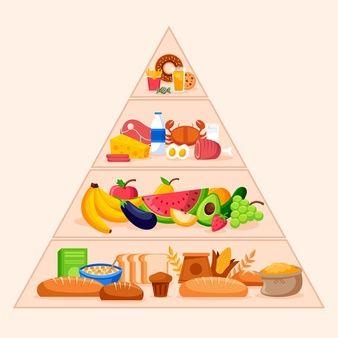 Download Food Pyramid Concept For Free Ahli Gizi Kartun