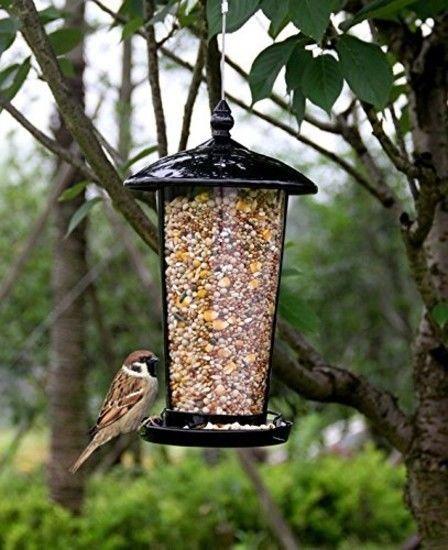 Wild Bird Feeder Clear Food Box Hanging Feeding Pet Parrot Garden Yard Decor US