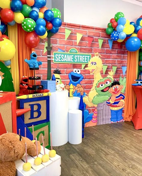 Sesame Street Themed Birthday Banner Backdrop/ Step & Repeat Design, Print and Ship! Elmo First Birthday, Baby Boy Birthday Themes, Boy Birthday Parties, Birthday Outfits, Gold Birthday, Birthday Ideas, Elmo Party, Sofia Party, Mickey Party