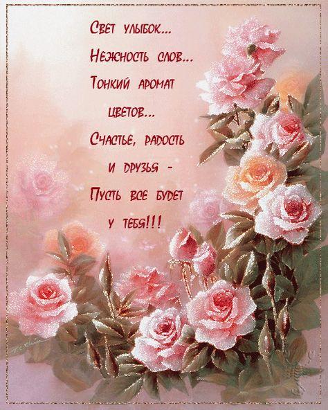 съёмке открытки цветы со стихами жизнь твоя пусть