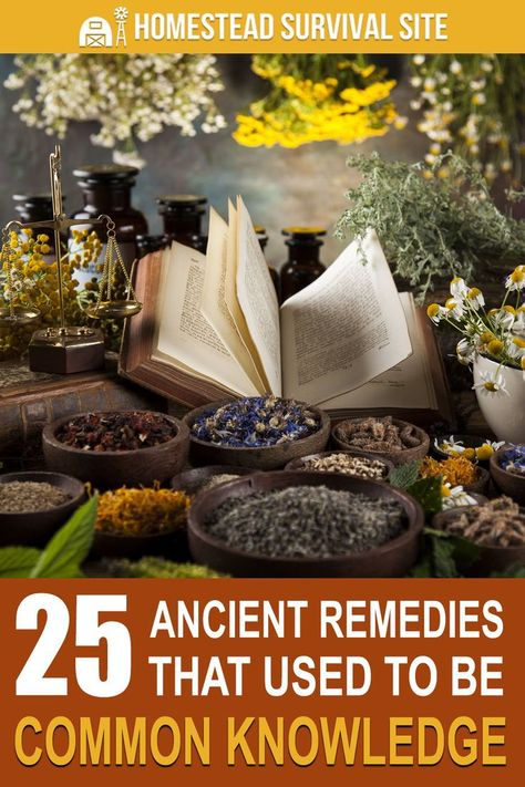 Home remedies and herbal cures are as ancient as mankind itself. Take a look at these simple home remedies that used to be common knowledge. #homesteadsurvivalsite #homeremedies #naturalremedies #ancientremedies #naturalmedicine