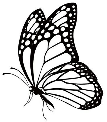 15+ Butterfly Clipart Black And White
