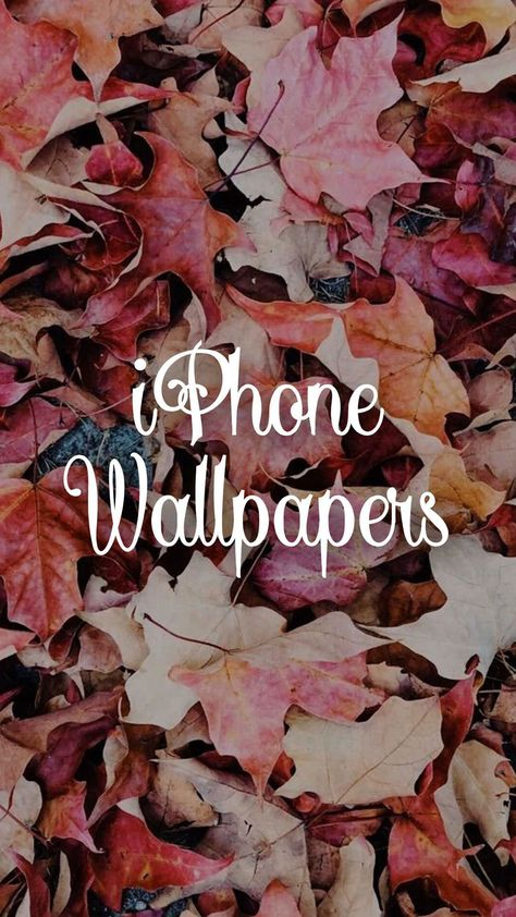 Create your own fall wallpapers with PicsArt! Download Now!