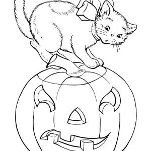 Pumpkins A Cat And Halloween Pumpkins Coloring Page A Cat And