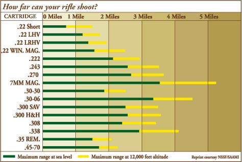 Gun Caliber Sizes Then Calibers Chart