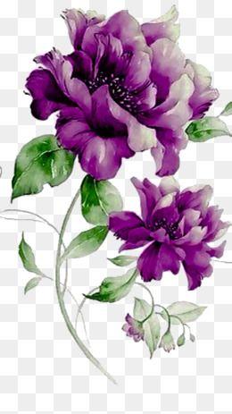 Purple Flowers The Story Leaf Decorative Material Story Decorative Material Purple Vector Flowers Vector Flower Art Flower Painting Purple Flowers
