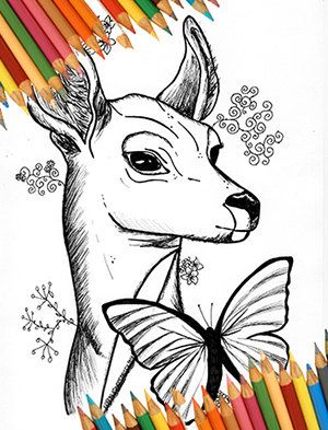 Electronics Accessories Video Games Life Is Strange Adult Coloring Book For Page Kids Craft Jpg Deer And Butt