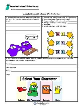 Amoeba Sisters Dna Replication Worksheet - worksheet