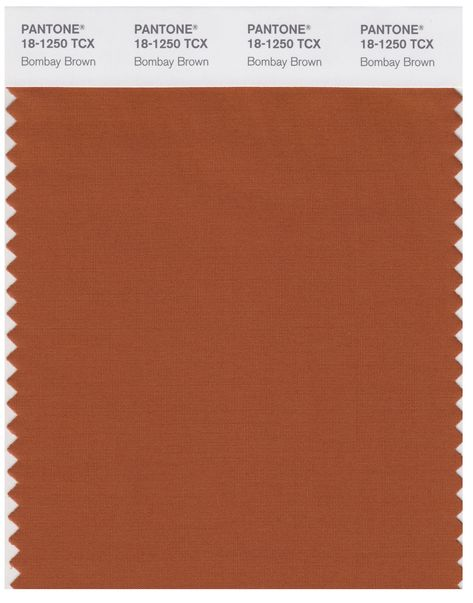 Pantone Smart 18-1250 TCX Color Swatch Card | Bombay Brown | Magazine Cafe Store NYC USA