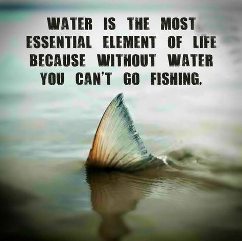 Funny fishing memes, inspirational fishing quotes and posts, fishing photos and videos, cool fish stories and much much more! Fishing Life, Gone Fishing, Best Fishing, Fishing Boats, Fishing Stuff, Fishing 101, Surf Fishing, Fishing Basics, Fishing Tackle