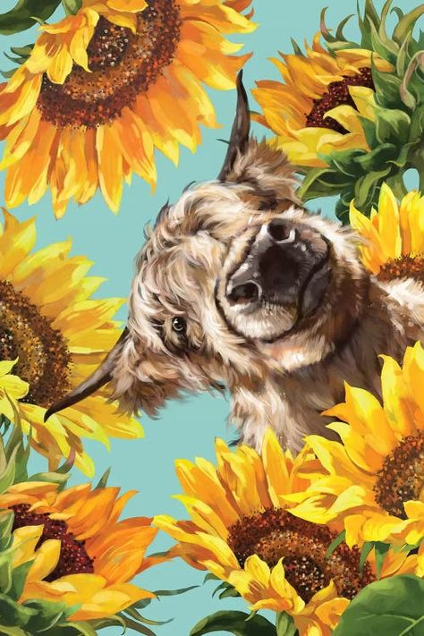 Highland Cow With Sunflower - Canvas Print
