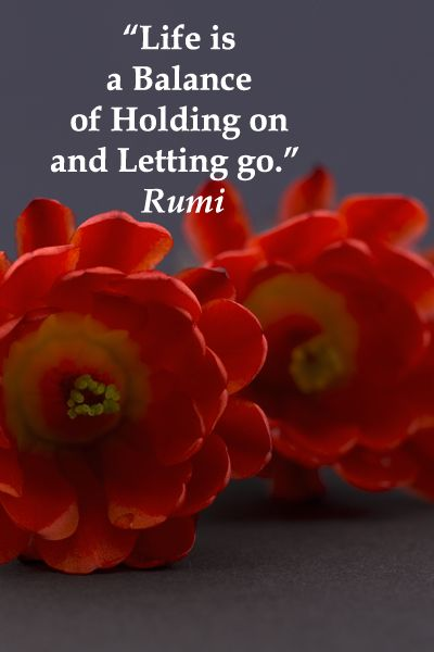 """""""Life is a Balance of Holding on and Letting go.""""  Rumi -- Explore quotes of wisdom at http://www.examiner.com/article/wise-quotes-to-inspire-learning-and-springboard-action?cid=rss"""