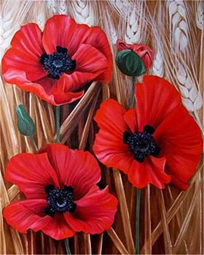 Pin Von Dotzenko Auf Cvety Mohn Malerei Wie Man Blumen Malt Blumen Malen