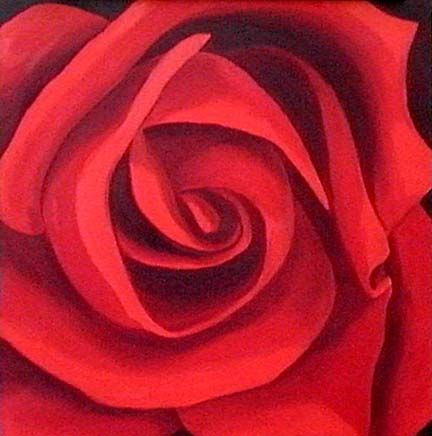RED ROSE FLOWER POSTER MACRO ART ROSES  PICTURE PRINT LARGE HUGE