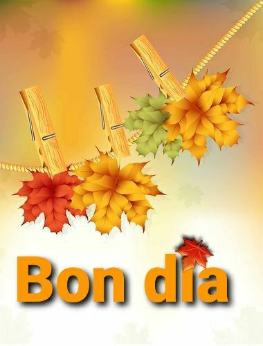 900 Ideas De Bon Día Saludos De Buenos Dias Sé Bueno Frases De Buenos Días