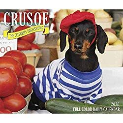Crusoe The Celebrity Dachshund 2020 Box Calendar Dog Breed