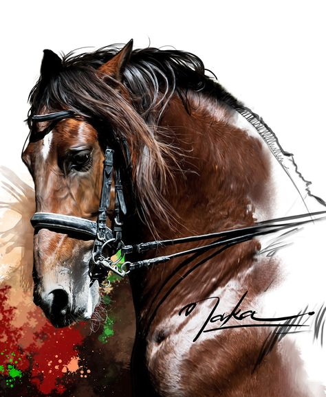 Pintura Digital - Andaluz Puro Sangue formato A3