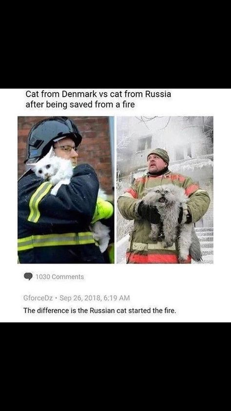 Only in Russia -  Only in Russia #funny #memes  - #EpicTexts #FunnyFridayMemes #FunnyMemes #FunnyPictures #russia