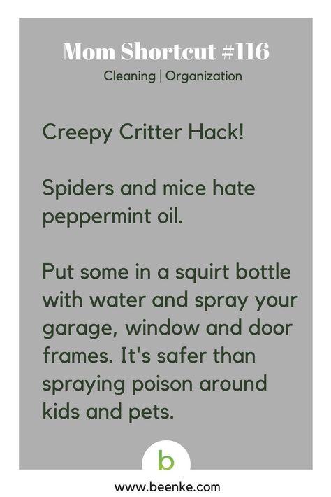 Mom Shortcut: Cleaning Hacks - Beenke