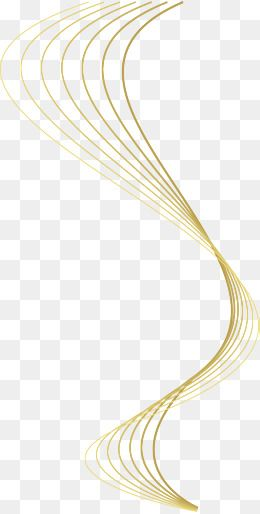 Golden Line Curve Pattern Lines No Dig Png Texture No Dig Png Golden Clipart Line C Line Design Pattern Powerpoint Background Design Book Cover Design Template