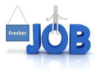 Fresher Jobs Available In Meerut Uttar Pradesh See Salaries