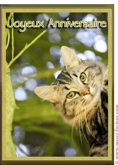Carte D Anniversaire Par Facebook Best Of Carte Petit Chat Aux Yeux Verts Pour Envoyer Par La P Anniversaire Chat Bon Anniversaire Chat Carte Anniversaire Chat