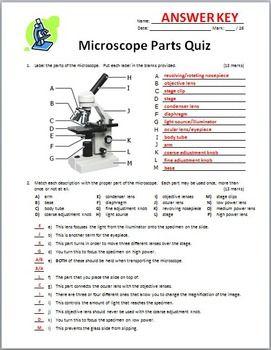 Microscope Quiz Two Versions Editable Microscope Parts