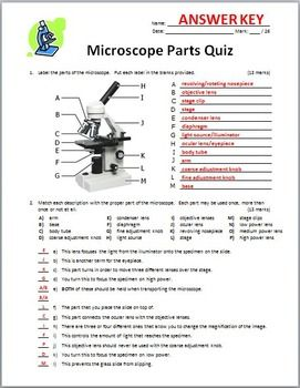 Microscope Quiz Two Versions Editable Microscope Parts
