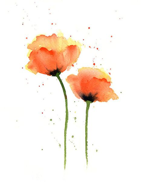 Watercolor Flower Art Poppies Art Print Orange Flower Wall