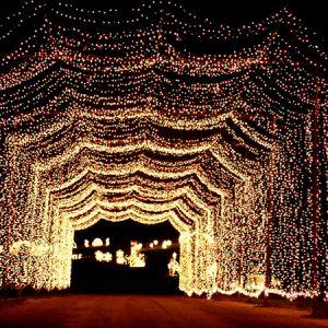 Christmas Light Displays In St Louis.Pinterest