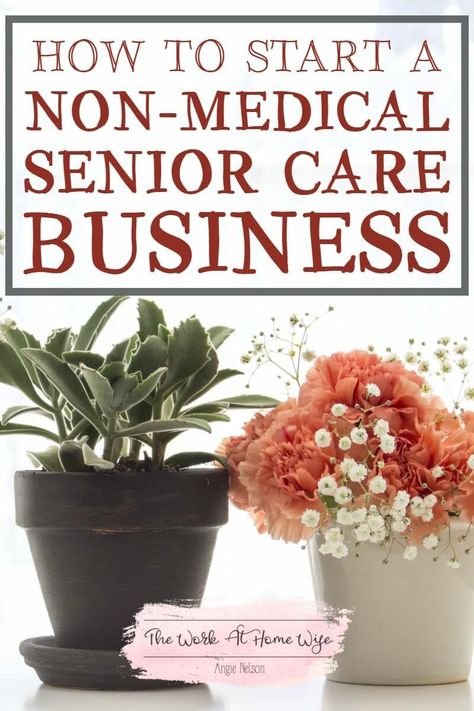 Start a Non-Medical Home Care Business: Senior Care Business Ideas If you& interested in the helping professions but don't have an advanced training, there's great opportunity for you in a non-medical senior care business. Home Care Agency, Home Health Agency, Home Health Services, Health Education, Nursing Degree, Senior Home Care, Nursing Programs, Home Health Care, Elderly Care