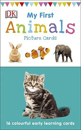 Epub My First Animals My First Touch And Feel Picture Cards