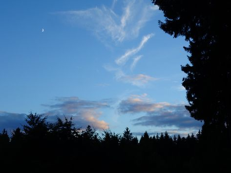 Evening - #draussen #harz #moon #mountains #nature #photography #sein #wanderlust #wandern