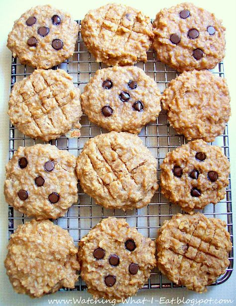 school day grab and go--PB oat breakfast cookies. High protein, no flour or processed sugar..(Ingredients: bananas, peanut butter, applesauce, vanilla, quick oatmeal, nuts, optional chocolate chips)