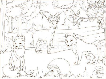 Floresta De Livro Para Colorir Com Animais Dos Desenhos Animados