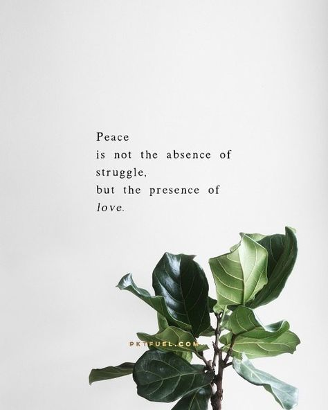 Peace is not something you can conjure up with an incantation: it's lived into... {CLICK THE IMAGE TO SEE MORE LIKE THIS IN OUR DEVOTIONAL APP}
