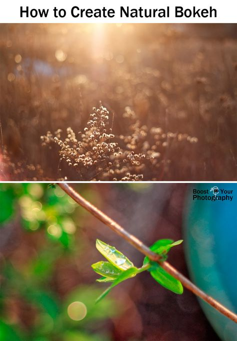 All about Bokeh - how to create natural bokeh \