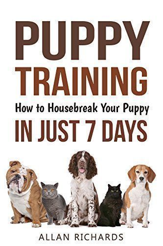 Dog Behavior Training To Housebreak Your Puppy Training Your