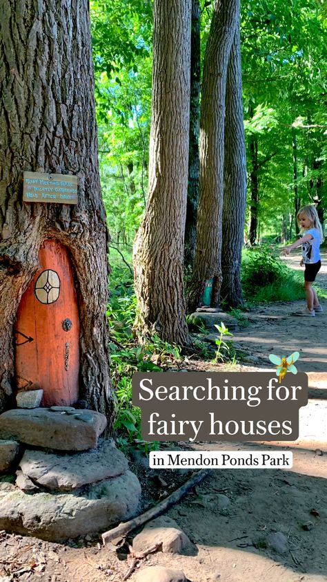 Searching For Fairy Houses In Mendon Ponds Park, Rochester NY