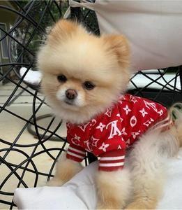 Pet Boutique Premium Dog Apparel And Fashion Fur Babies Pet Boutique Pets