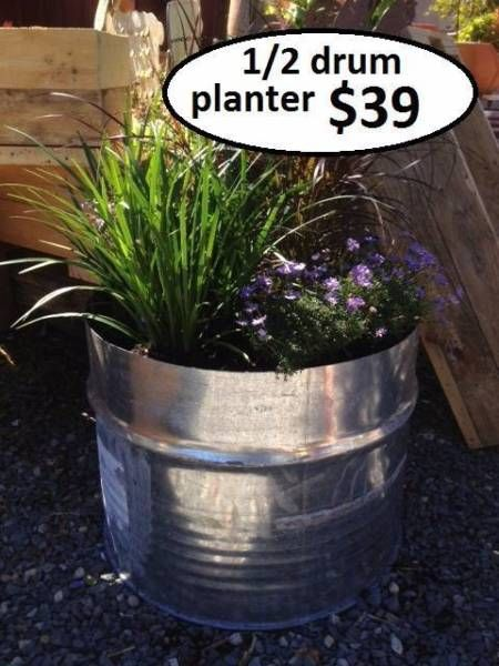 Metal Drum Planters At Maples Nursery Near The Pet Supply Store Up The Road Planters Garden Plant Pots Industrial Planter