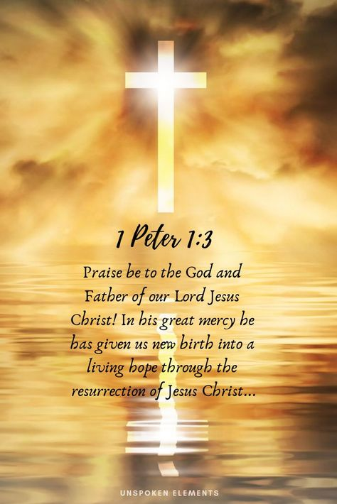 Praise be to the God and Father of our Lord Jesus Christ! In his great mercy he has given us new birth into a living hope through the resurrection of Jesus Christ from the dead... (1 Peter 1:3)
