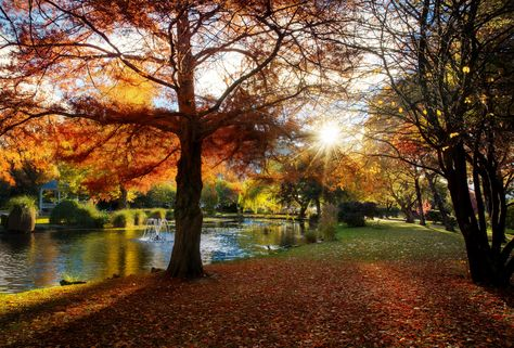 With one more big wind storm here we're gonna lose all the pretty autumn leaves and head into a cold and snowy winter... #TreyRatcliff #Autumn #Queenstown #NewZealand #Fall #Colours #Colors