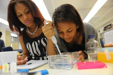 Harlem DNA Lab gives school kids a dose of science during the summer months